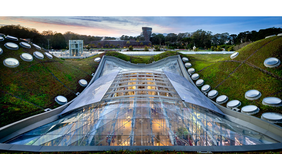 CALIFORNIA ACADEMY OF SCIENCES,     Retractable Roof: Walter P. Moore and Associates/Uni-Systems